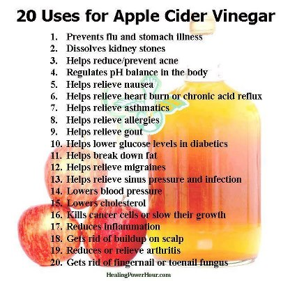 Benefits of Apple Cider Vinegar   babycupcake's healthy eats